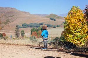 Lifestyle Children's Photographer